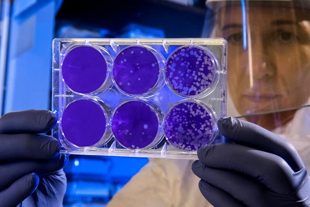 Virus, antiseptiques et désinfectants